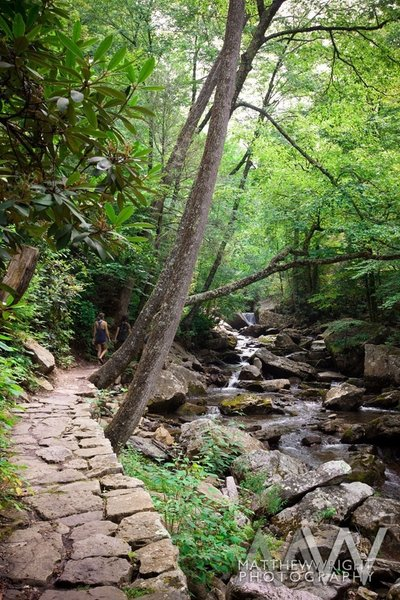 The trail follows the creek up to the falls