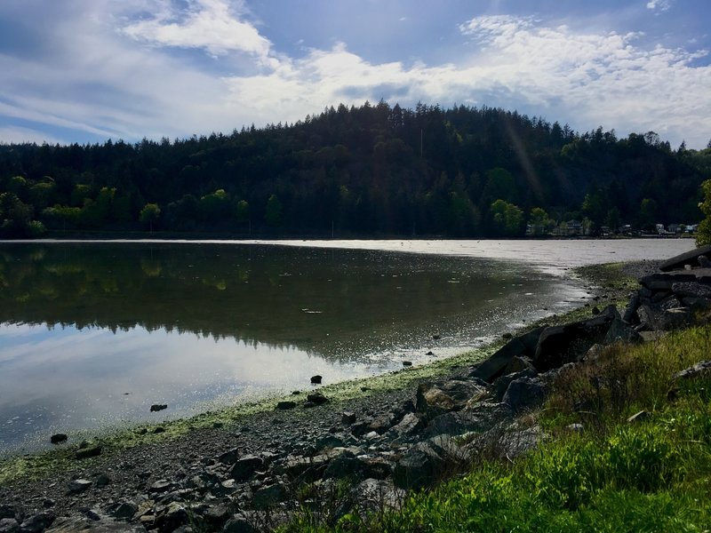 Reflections on Fidalgo Bay.