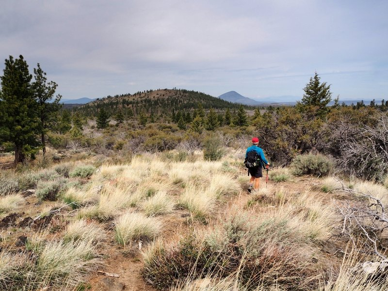 Eagle Nest Butte and Mount Dome from the trail