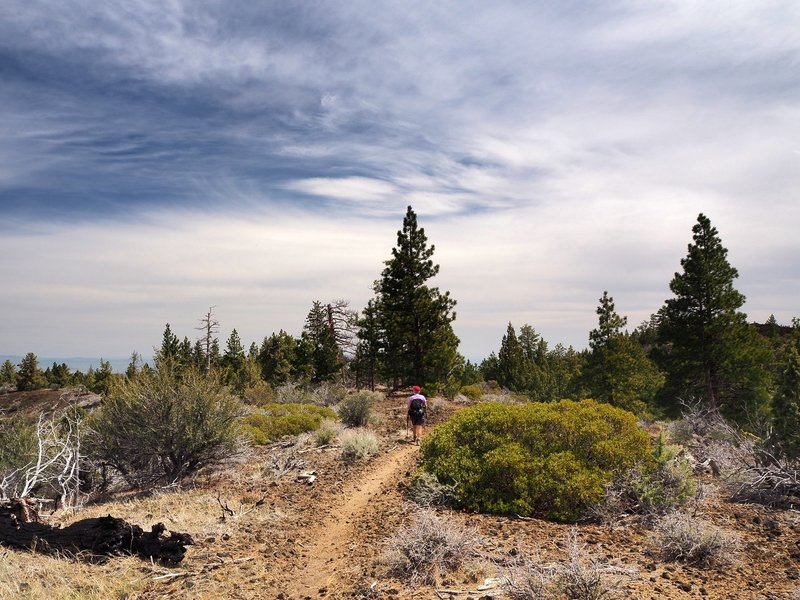 The Big Nasty Trail on the edge of Mammoth Crater