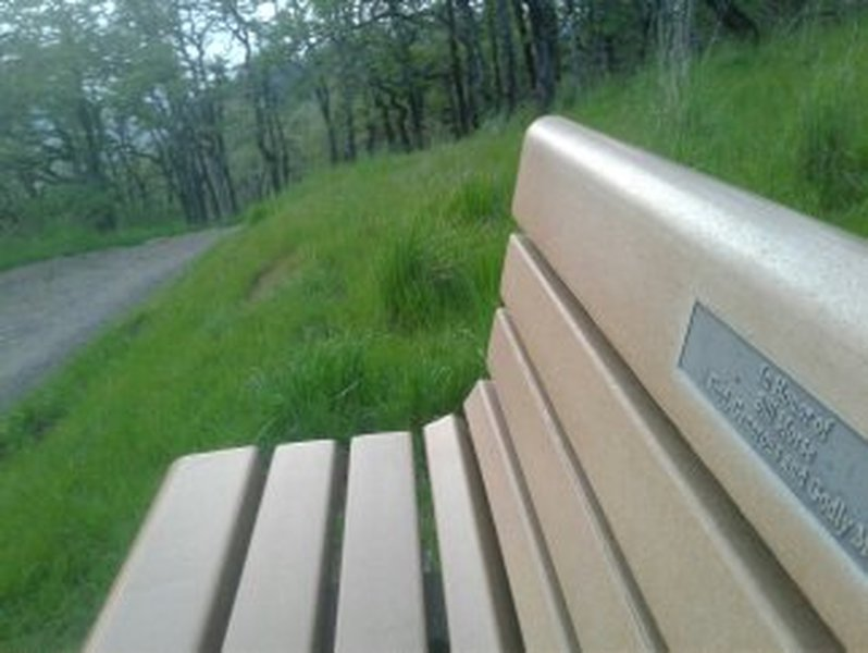 Bench with specially placed rock for excellent photo opps