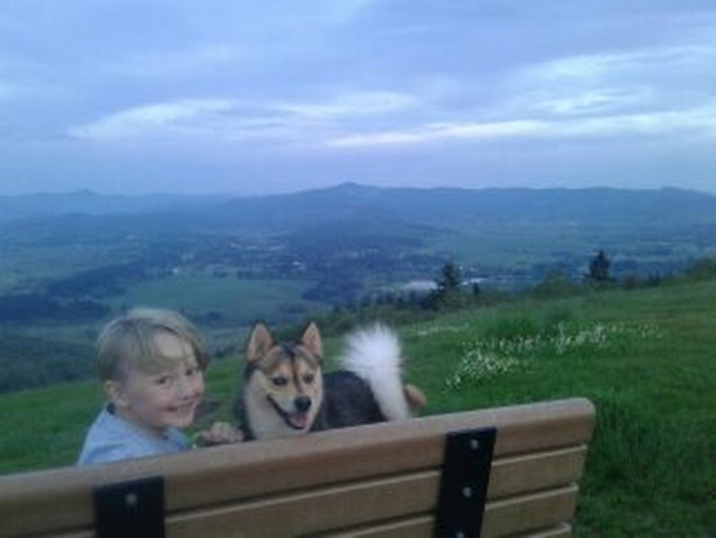 At the top. Kiddo and pup friendly.