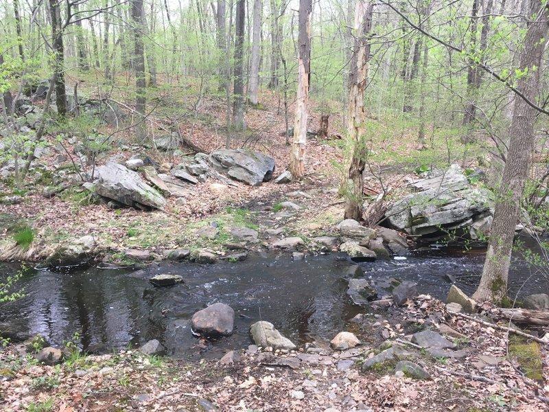 Stream crossing on Little Bear Trail (Green)