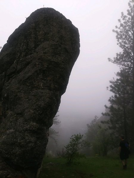 A misty day in spring. Nicole took this awesome picture of one of the shorter climbing rocks.