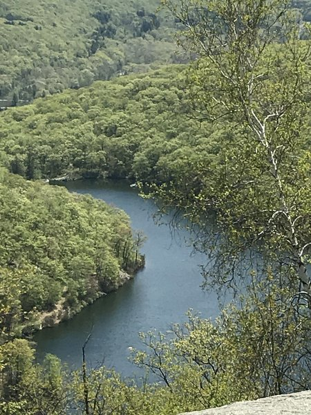 View of Turkey Lake