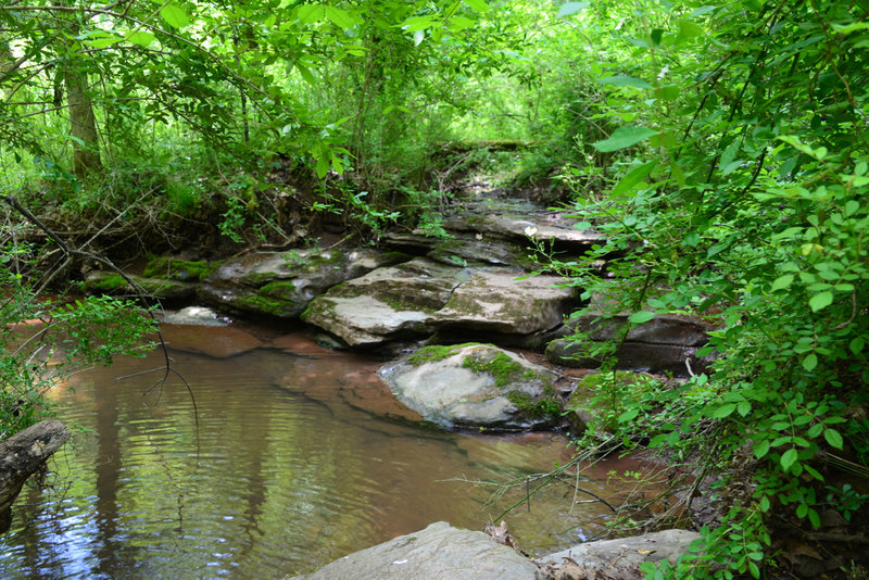 The lower two-thirds of the Blue Trail runs along, around and through a creek. Use caution. Footing can be slippery in wet conditions.
