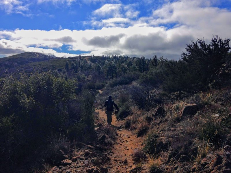 Heading up the dusty trail