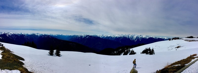The top of Hurricane Ridge covered in snow.