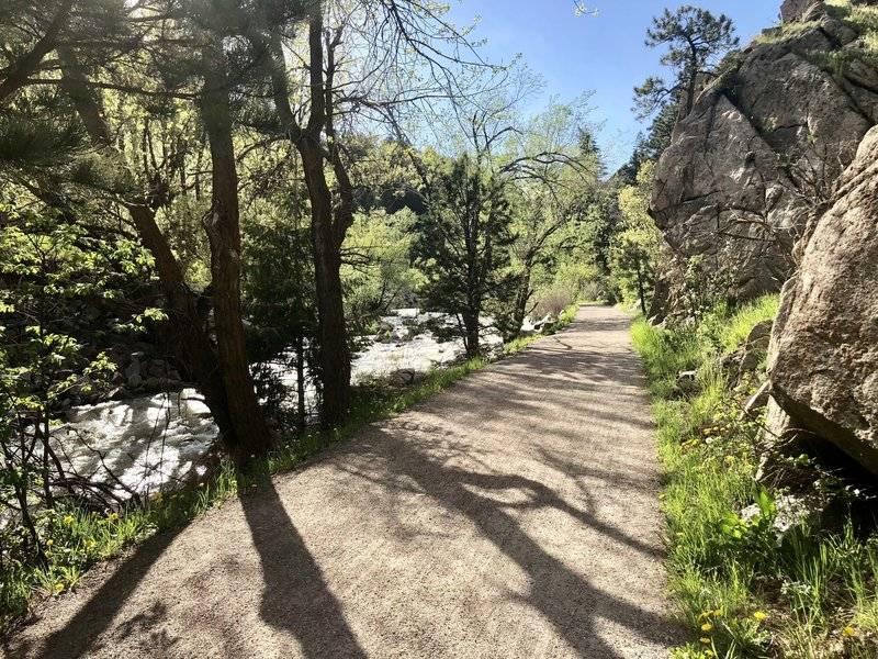 Beautiful path in Boulder Canyon