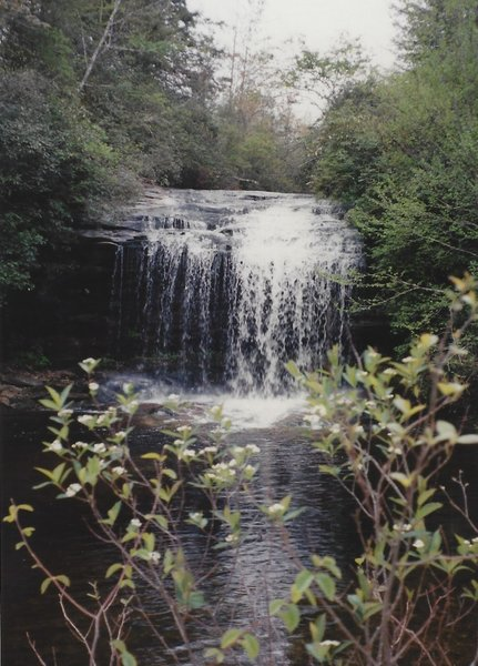 Summer view of the falls
