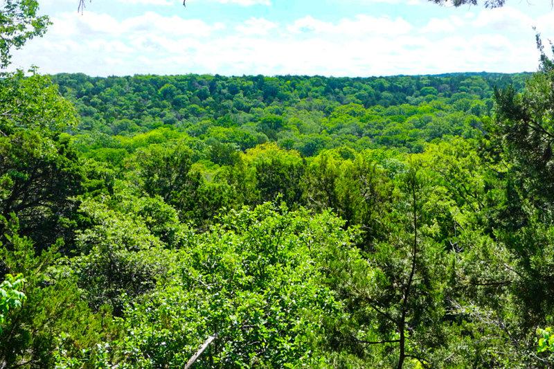 Great views abound on top of Cedar Ridge.