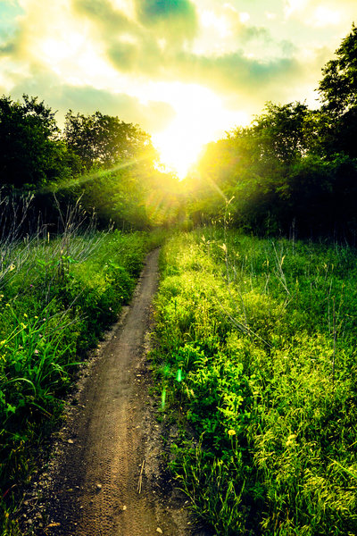 A beautiful sunrise over the trail adds a bit of serenity to the day.