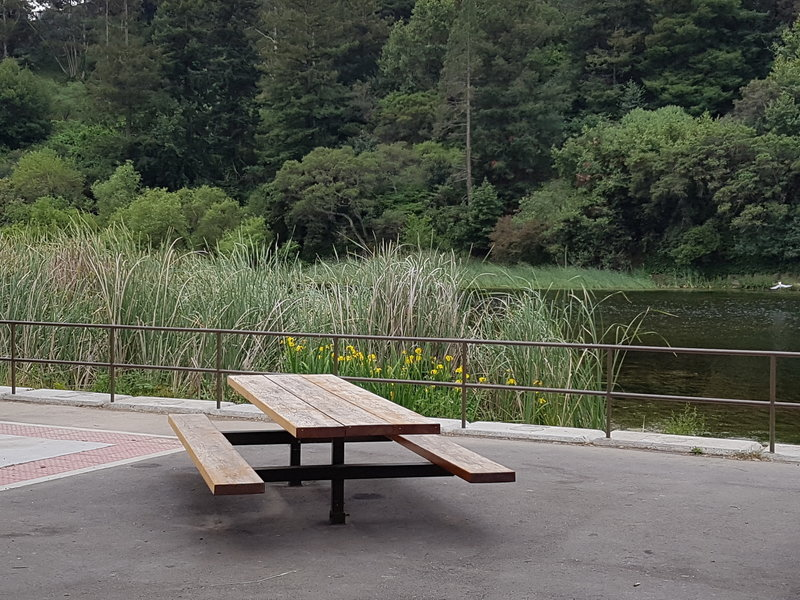 Picnic area with BBQ next to one of the fishing docks