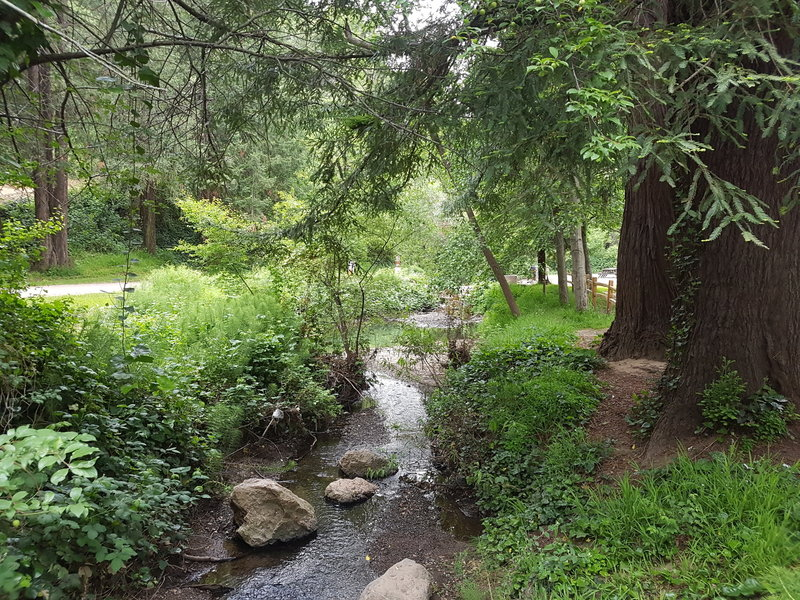 Stream that feeds Lake Temescal