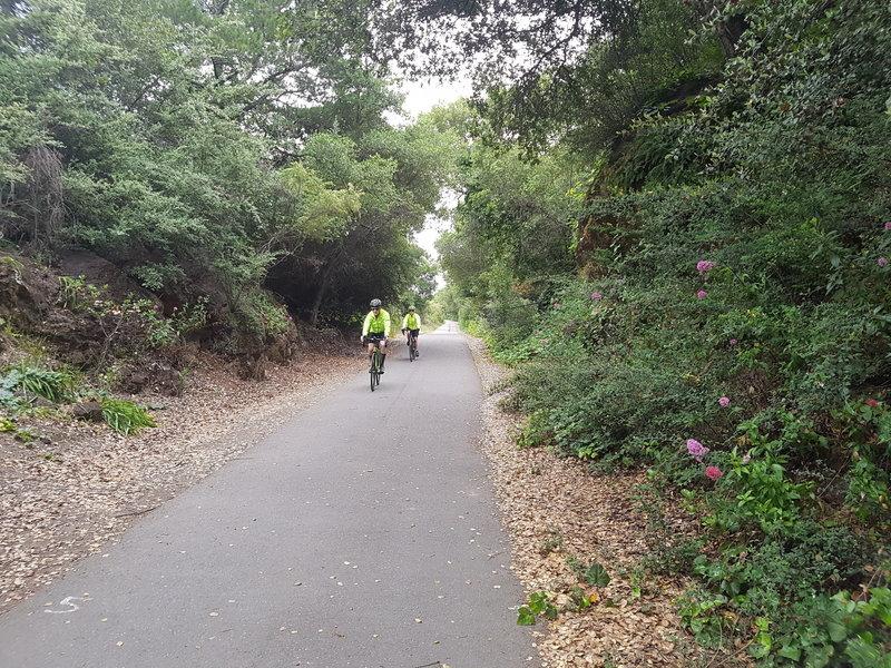 Trail is great for biking