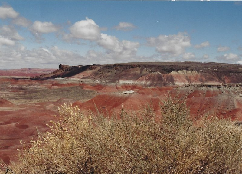 View of the Painted Desert