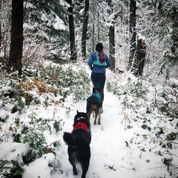 Snow run on Minnow Ridge