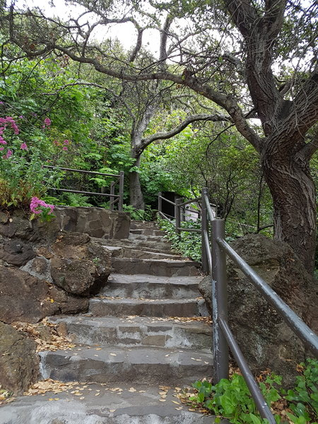 Stairs up to the Beach House, gardens, and man-made waterfall