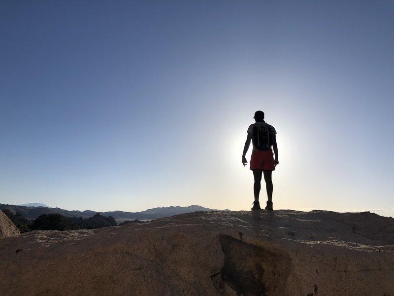 Ryan Mountain - Joshua Tree National Park