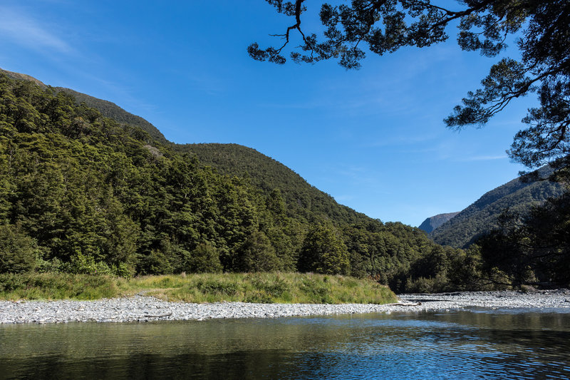 Haast River from the east bank