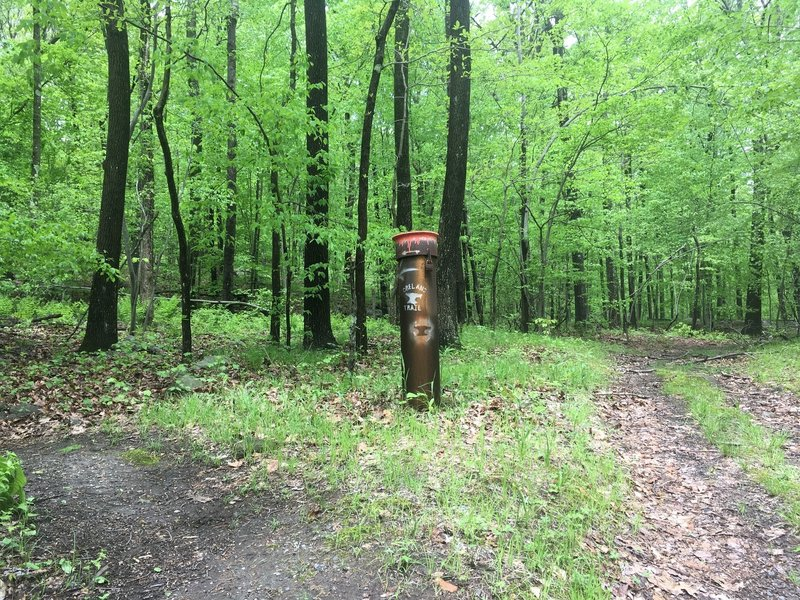 Trail marker towards the end