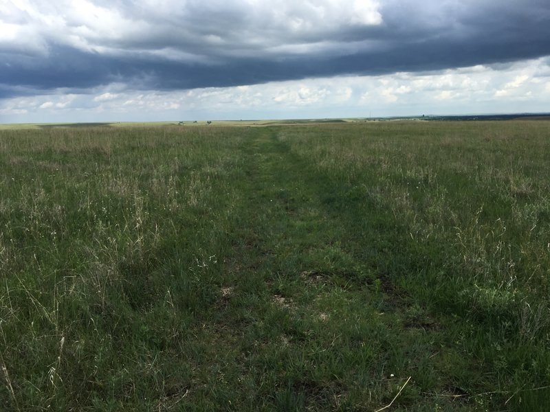 Mowed ranch road ruts that make up most of the Ranch Legacy Trail.