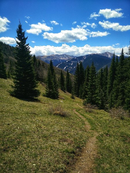 Gavilan Trail on the way back as it descends through the meadow