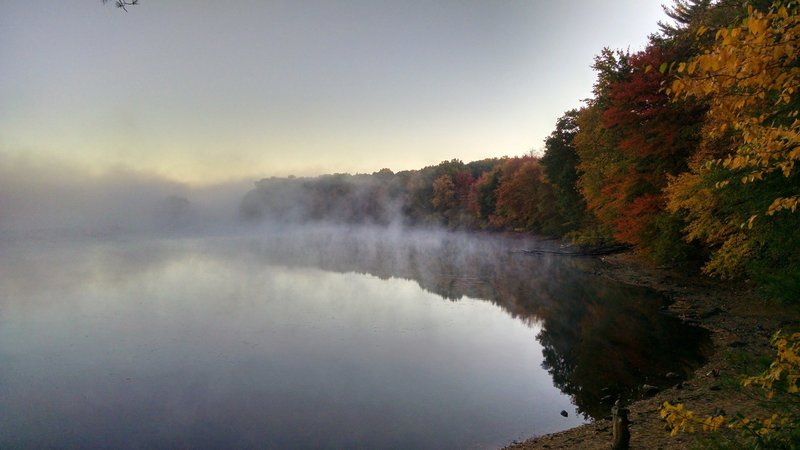 Fall fog - no druids required