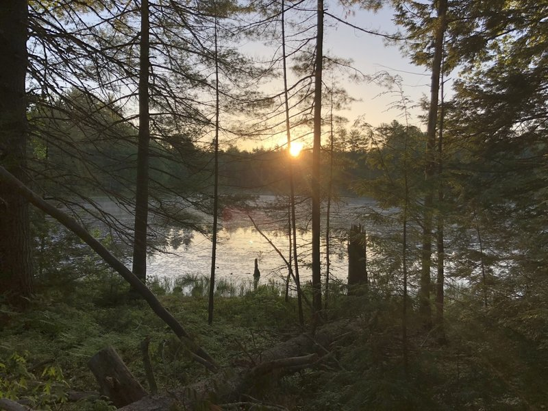 Sunrise over a beaver pond