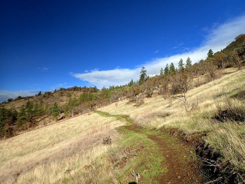 Climbing the Greenhorn Trail