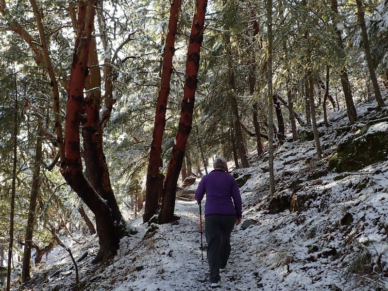Climbing the east side of the Ponderosa Trail in winter.
