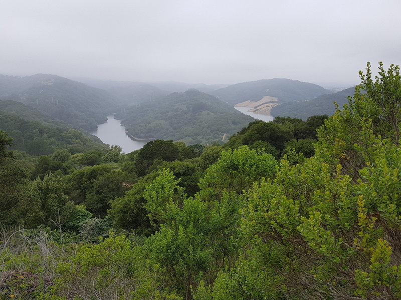 View of Upper San Leandro Reservoir from Soaring Hawk Trail