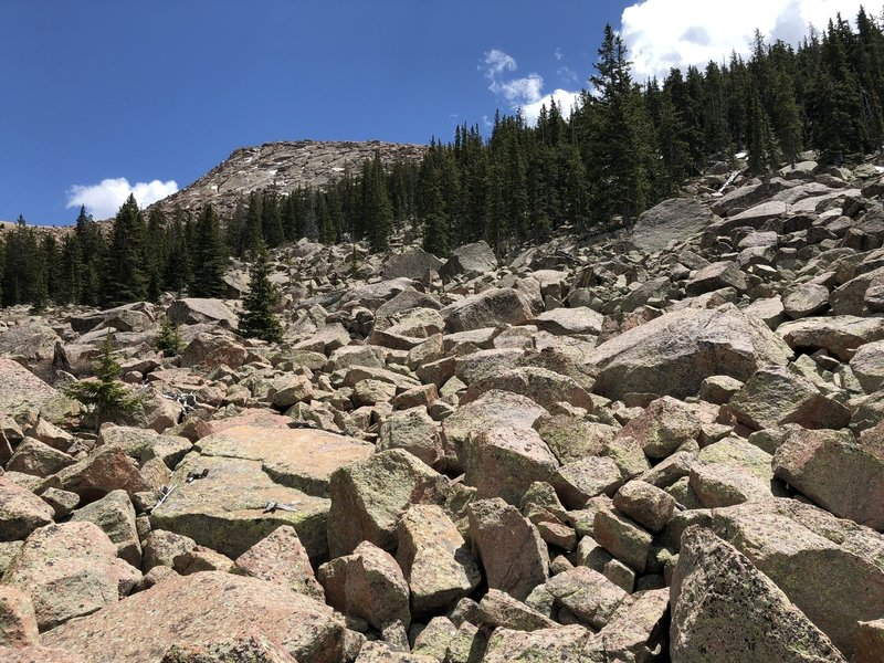 Bottom view of boulder field on north approach to Sentinel Point