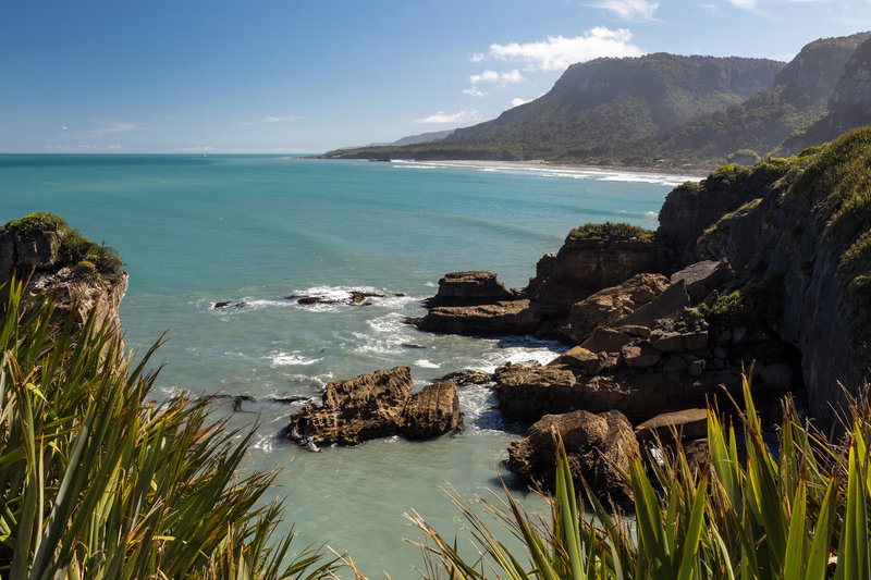 Coast of Paparoa National Park