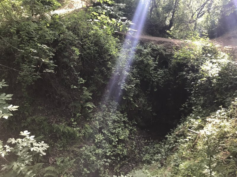 Weather-wise, this was the coolest part of my day. Plenty of canopy cover with intermittent sun. Photo shows the trail above an overgrown culvert with running water.