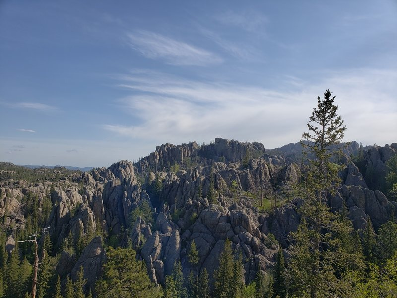 Black Elk Peak seen in the distance from a point on trail #9