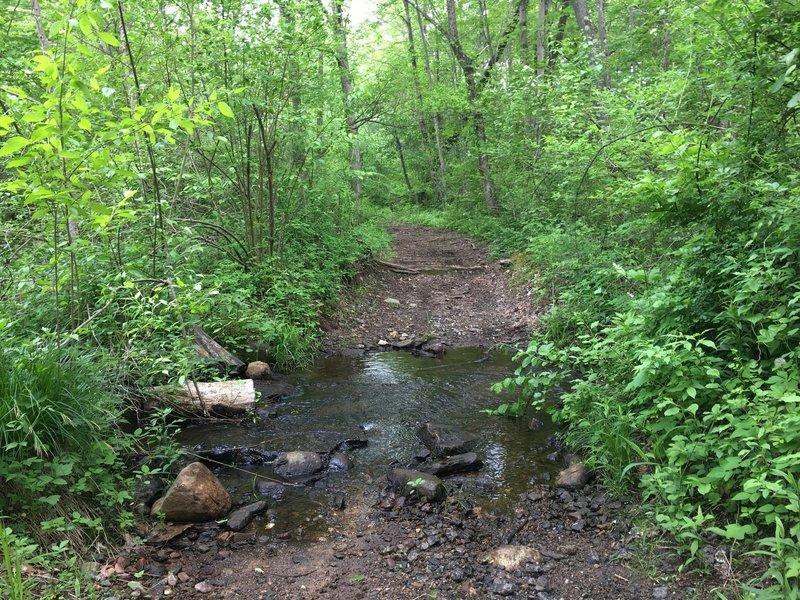 Small stream crossing