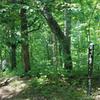 Start of trail from Oak Grove Shelter