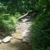 Creek, Water!
