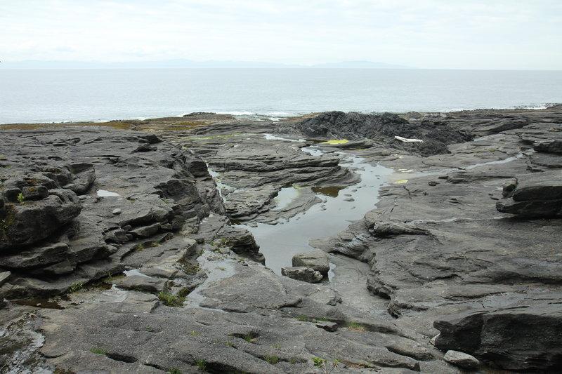 Tidal rock shelf along the JDF Marine Trail