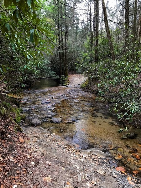 A wet creek crossing