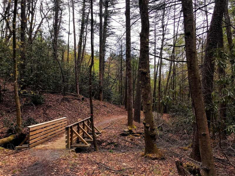 The trail features sturdy bridges built for the horses