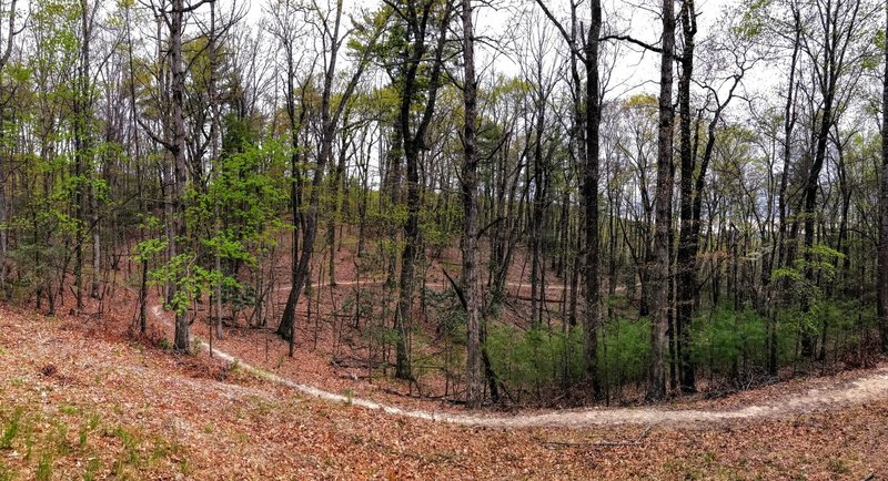The trail curves along the hillside