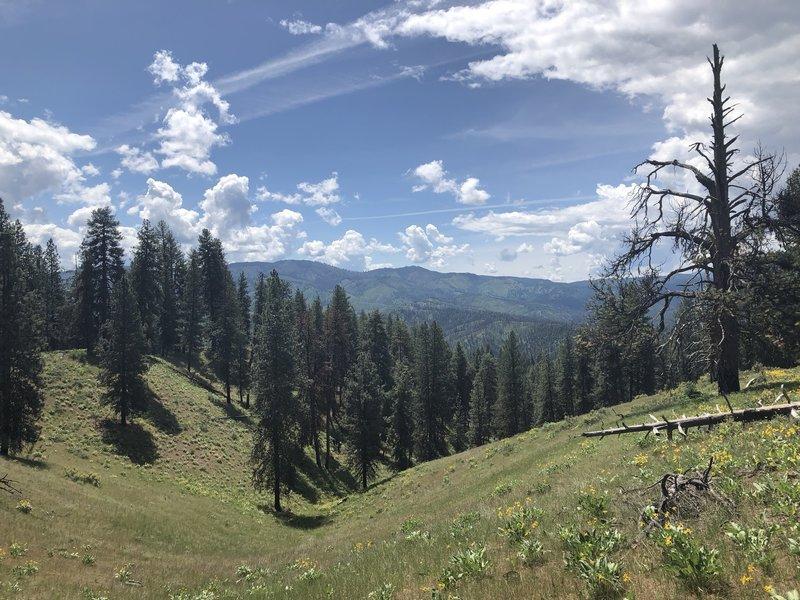 Halfway through the trail