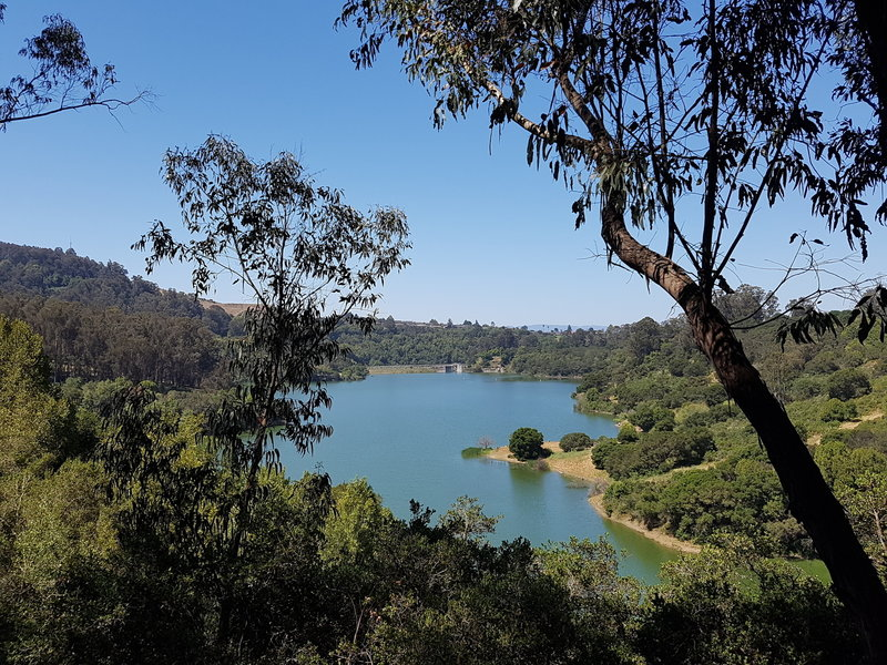 View of Lake Chabot from the campground