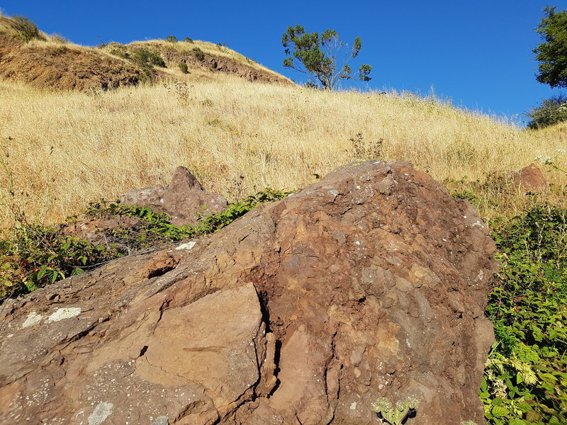 "Sign #8: ""This huge, reddish-brown block of lava fell from the cliffs to the upper right. The lava cooled and hardened while it was still moving, resulting in dramatic fragmentation, known as ""autobrecciation"" (self broken)."""