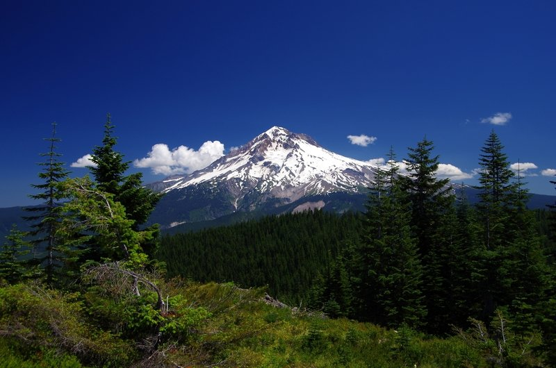 Mount Hood from near Zig Zag Mountain