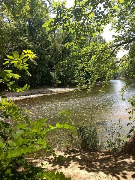 View of Williams Creek
