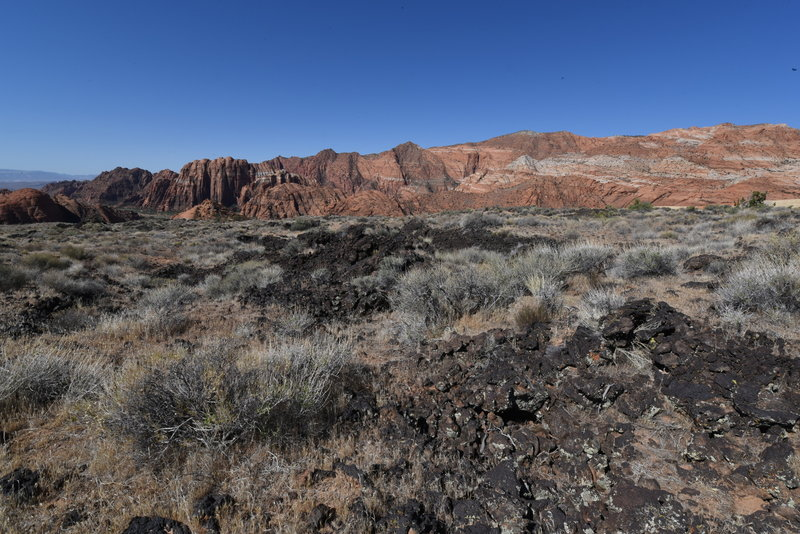 View from Lava Flow Trail