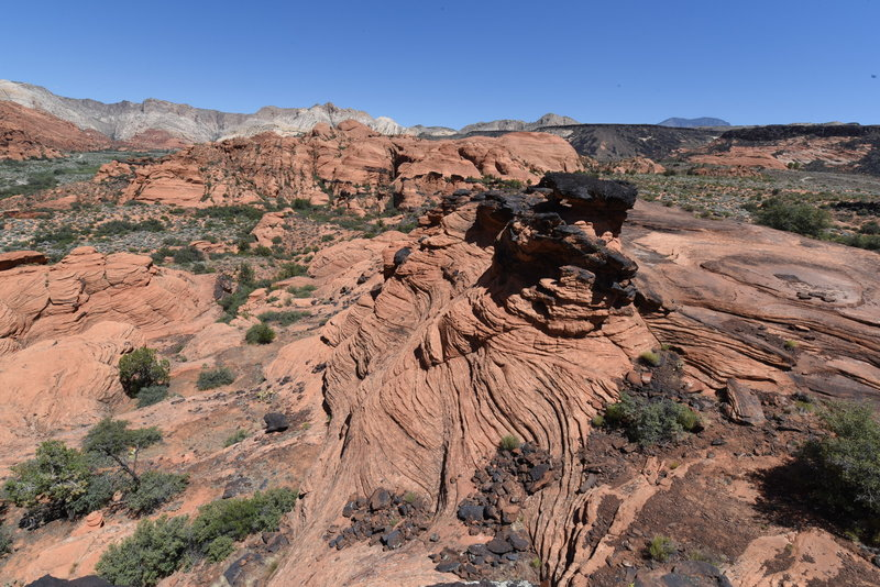 Petrified Dunes view point